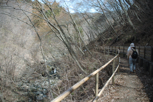 渓谷を歩く