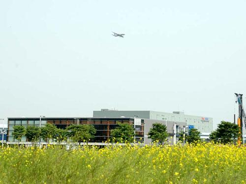 花畑と飛行機