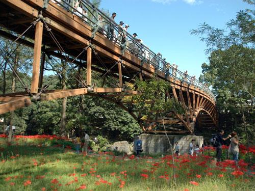 巾着田にかかる橋