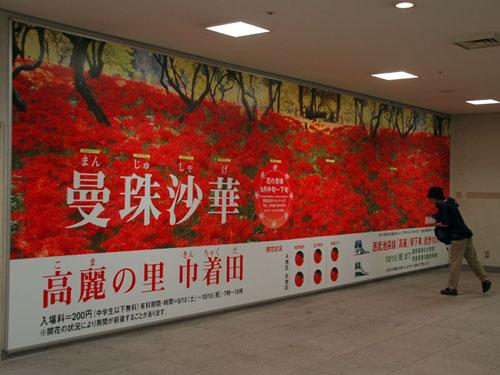 曼珠沙華のポスター