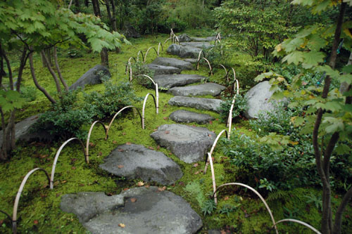 苔むした日本庭園