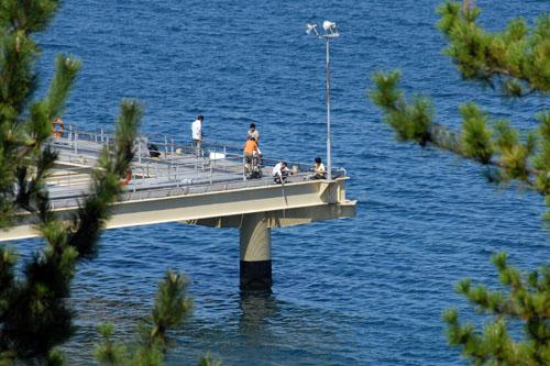 海づりセンターで釣りを楽しむ人たち
