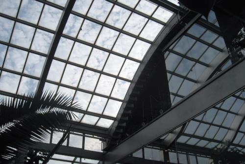 東京都板橋区立熱帯環境植物館