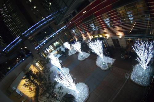 汐留イルミネーション 2007