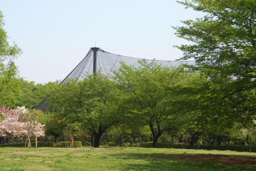 りすの家@さいたま市 市民の森