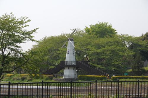 展示温室@さいたま市 市民の森
