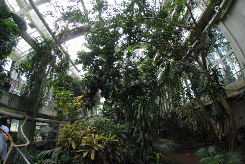 開園記念日:井の頭自然文化園