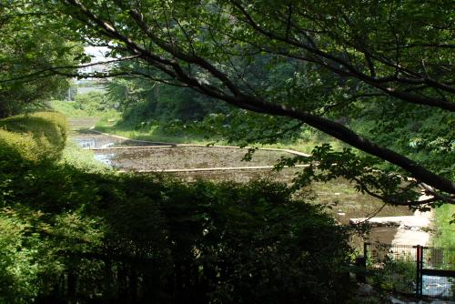 近代農学発祥の地・駒場野公園