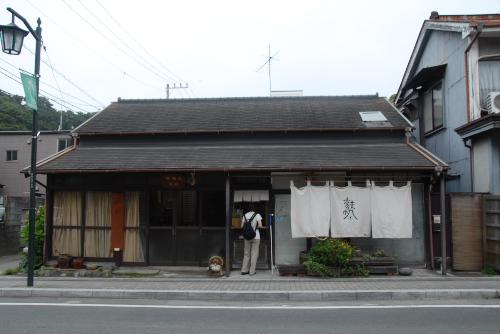 鎌倉アジサイ散歩 鎌倉文学館