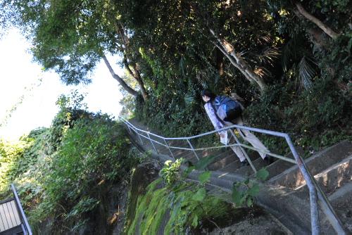 生田緑地のバラと緑で癒す登戸ウォーキング