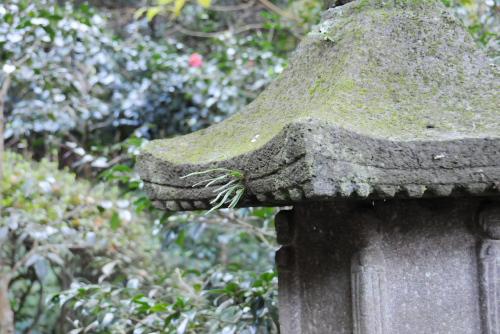 円覚寺の灯籠