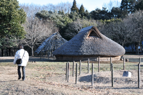 加曽利貝塚で学ぶ縄文の暮らし