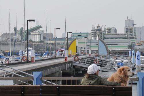 ゆめのしま海の駅
