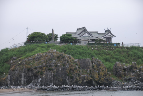 蕪島ウミネコ繁殖地