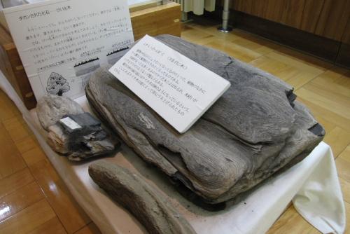 洋野町歴史民俗資料館