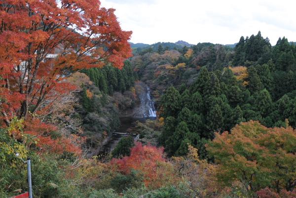 粟又の滝展望台
