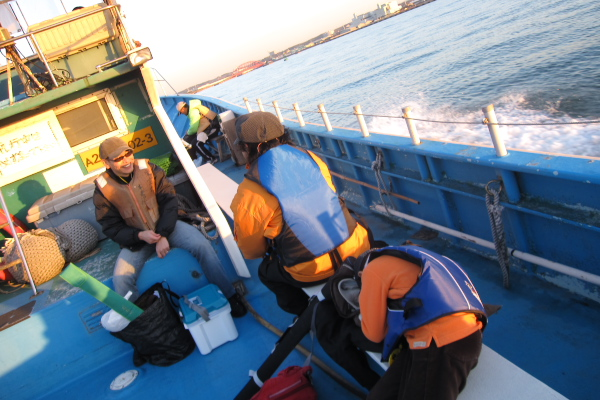 木更津の堤防で釣り