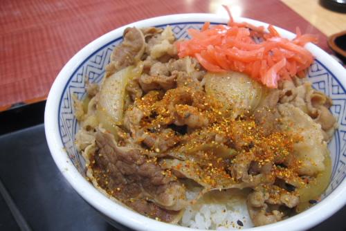 海老名SA:吉野家の牛丼