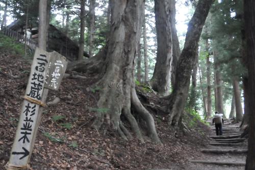 二百地蔵杉並木