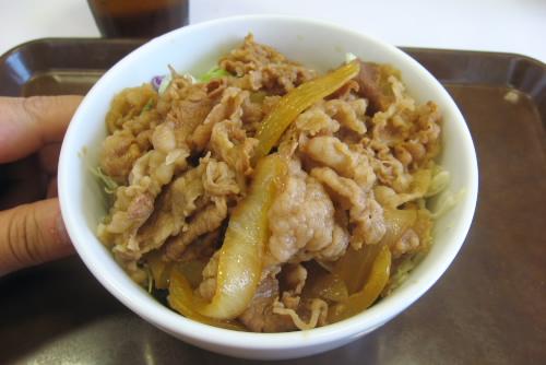 牛丼ライト (330円)