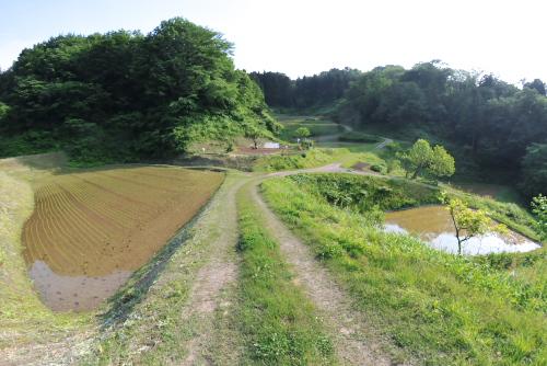 吉川出張:山あいに作られた田畑。観光で訪れても見られない。