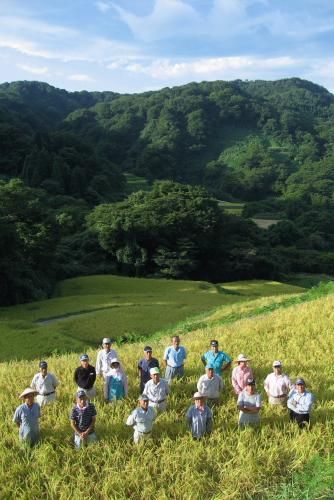 吉川:健菜コシヒカリの農家たち