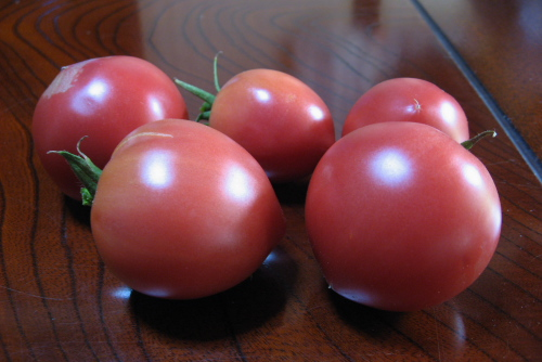 吉川:トマト
