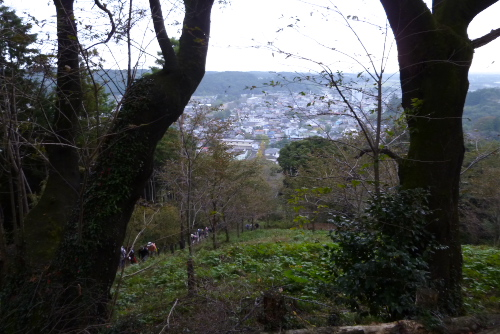 武蔵おごせハイキング大会