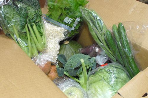 永田農法の野菜たち