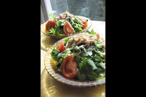 サラダうどんの季節