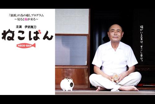 ねこばん (全12話)