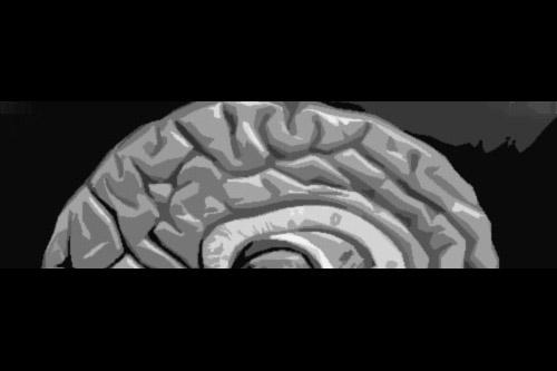 第38夜:脳を盗まれた女