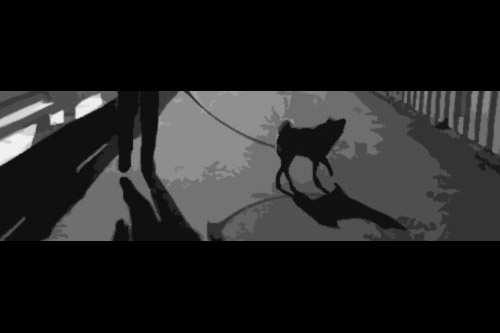 第58話:吾輩は犬である