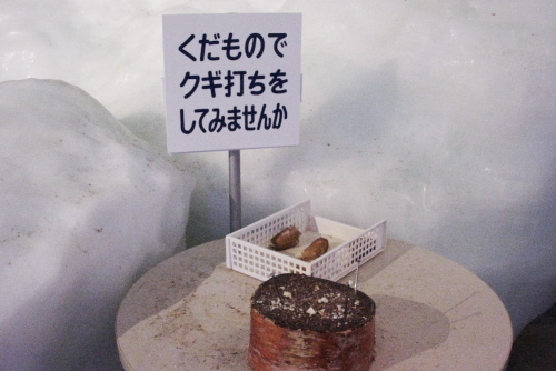冬のオホーツク流氷館