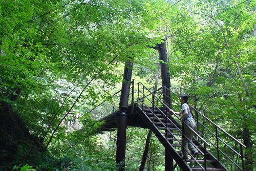 留春の滝 / 国道の下は別世界