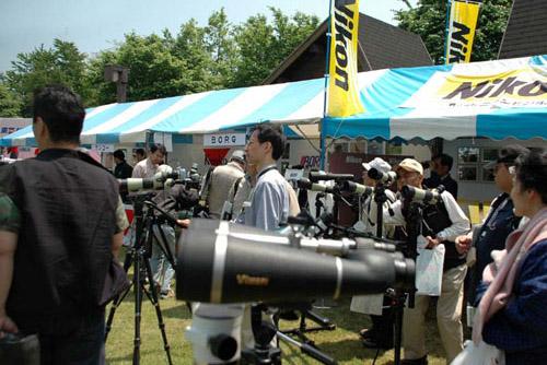 東京港野鳥公園と東京バードフェスティバル2005