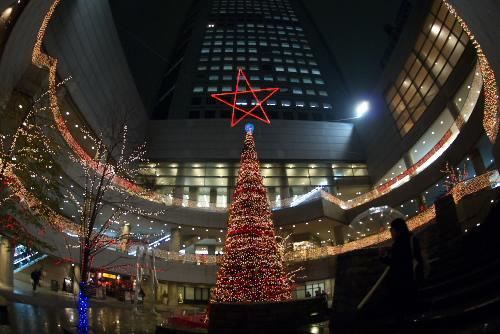 東京オペラシティ / 劇場都市のクリスマス