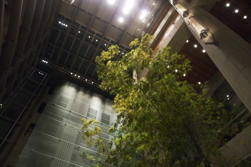 日本橋三井タワー / 静謐の空間