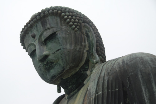 鎌倉大仏(高徳院) / 鎌倉アジサイ散歩(4/12)