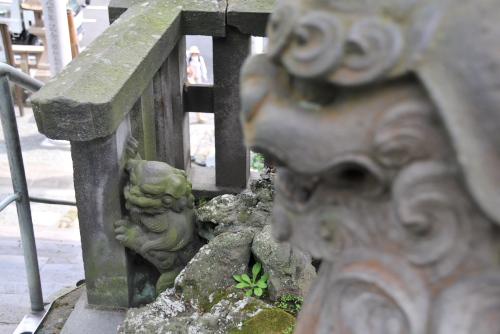 西叶神社 / 隠れ狛犬を探せ