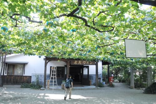 原茂ワイン Cafe Casa Da Noma / 場所に価値あり