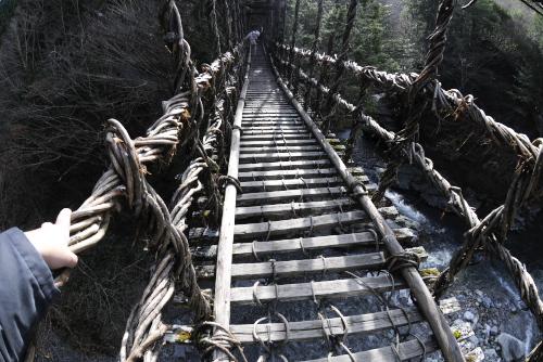 奥祖谷の二重かずら橋 / これぞ本命