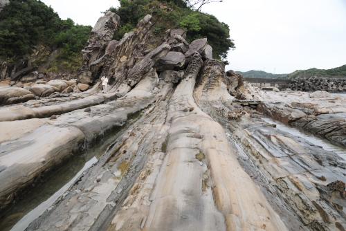 竜串海岸 / 内臓のような特殊地形