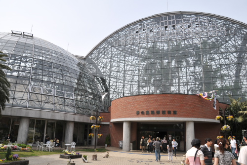 夢の島熱帯植物園 / みどりの日は無料公開