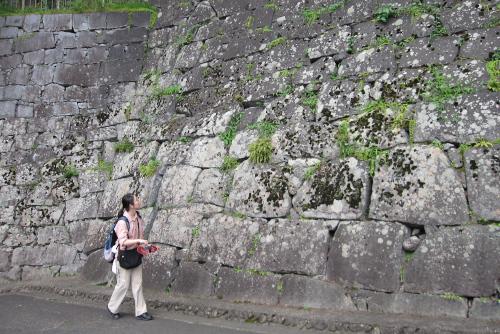 盛岡城跡公園 / 石垣と内堀、そして生い茂る木々