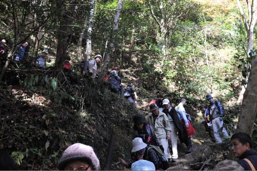 梅ヶ瀬渓谷・尾根ルート / 養老渓谷ハイキング