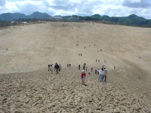 鳥取砂丘:陸側
