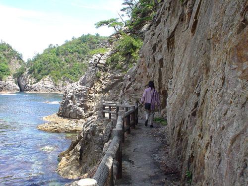 浦富海岸:海岸線の道