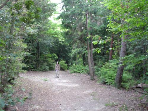 将軍塚・東山山頂公園