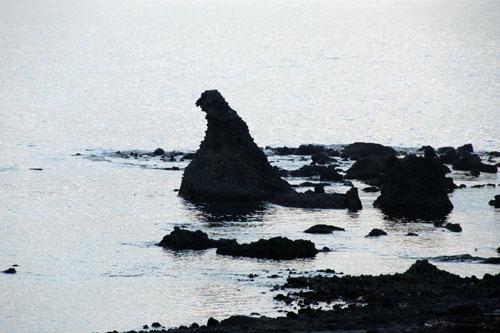 これがゴジラ岩だ